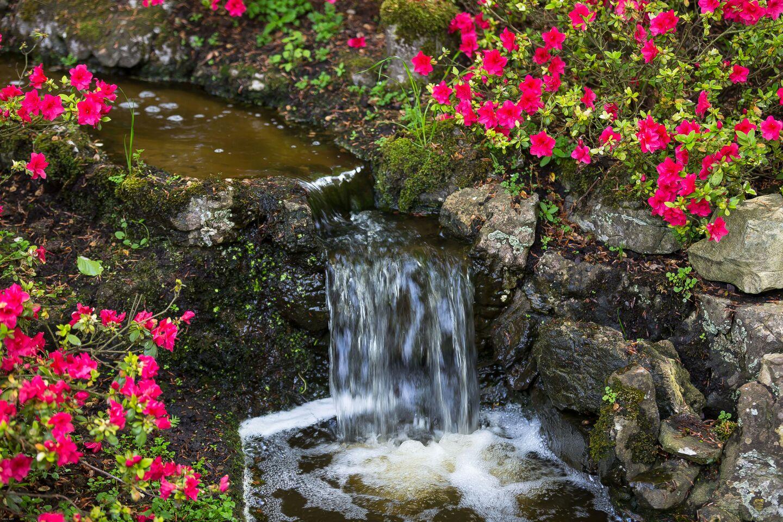 El murmullo de la corriente del agua enamorada...