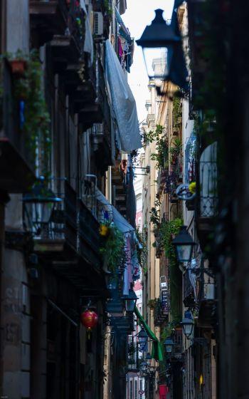 Calles del Barrio Gótico «hablan» de la brevedad de la vida...