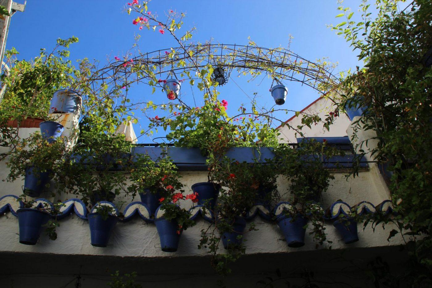 Córdoba y sus casas-patio conservan una forma de vida...