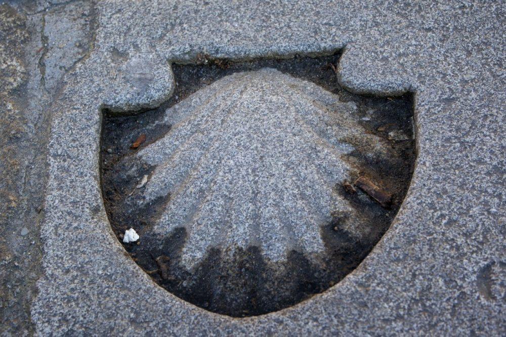 Una concha de piedra simboliza todos los caminos